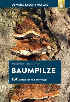 Baumpilze von Cech,  Thomas L., Jankovský,  Libor
