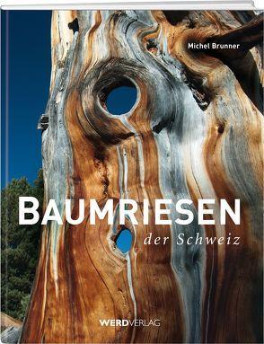 Baumriesen der Schweiz von Brunner,  Michel, Hübscher,  André