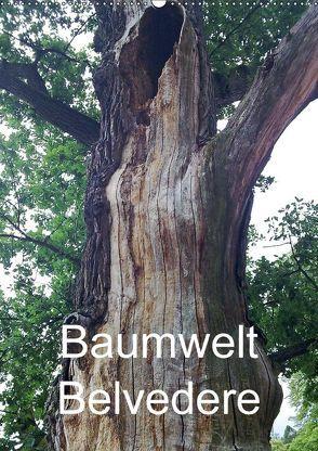 Baumwelt Belvedere (Wandkalender 2018 DIN A2 hoch) von Hufeld,  Bernd