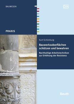Bauwerksoberflächen schützen und bewahren von Schönburg,  Kurt