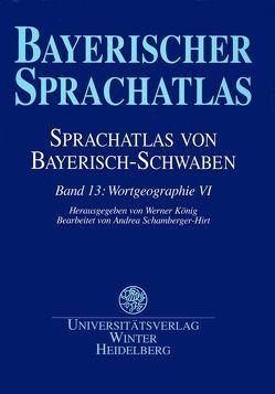 Sprachatlas von Bayerisch-Schwaben (SBS) / Wortgeographie VI von Funk,  Edith, König,  Werner, Renn,  Manfred, Schamberger-Hirt,  Andrea, Schwarz,  Brigitte