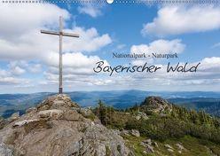 Bayerischer Wald (Wandkalender 2018 DIN A2 quer) von Vonzin,  Andreas