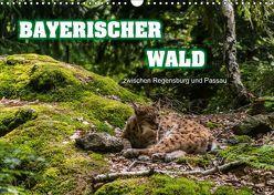 Bayerischer Wald (Wandkalender 2019 DIN A3 quer) von Thiele,  Ralf-Udo