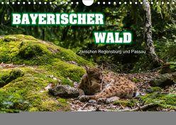 Bayerischer Wald (Wandkalender 2019 DIN A4 quer) von Thiele,  Ralf-Udo
