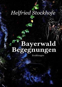 Bayerwald Begegnungen von Stockhofe,  Helfried