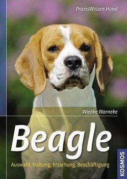 Beagle von Warneke,  Wiebke