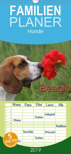 Beagle – Familienplaner hoch (Wandkalender 2019 , 21 cm x 45 cm, hoch) von - Antje Lindert Rottke + Martina Berg,  Pferdografen.de