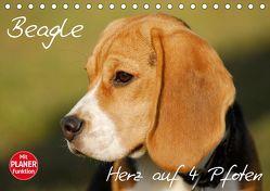 Beagle – Herz auf 4 Pfoten (Tischkalender 2019 DIN A5 quer) von Starick,  Sigrid