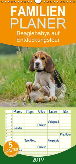 Beaglebabys auf Entdeckungstour – Familienplaner hoch (Wandkalender 2019 , 21 cm x 45 cm, hoch) von Teßen,  Sonja