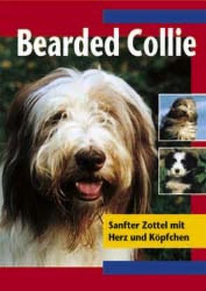 Bearded Collie von Baumgart,  Liesel