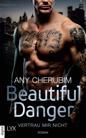 Beautiful Danger – Vertrau mir nicht von Cherubim,  Any