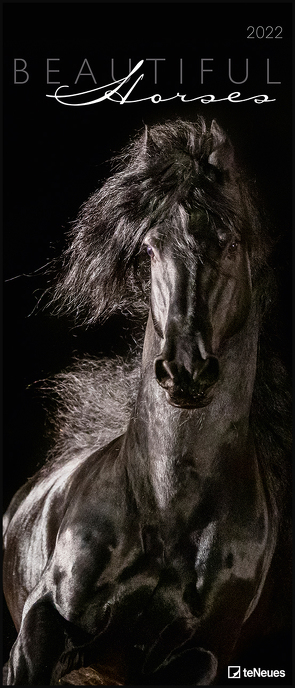 Beautiful Horses 2022 – Foto-Kalender – Wand-Kalender – 30×70