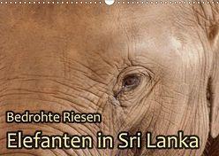 Bedrohte Riesen – Elefanten in Sri Lanka (Wandkalender 2018 DIN A3 quer) von Sobottka,  Joerg