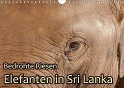 Bedrohte Riesen – Elefanten in Sri Lanka (Wandkalender 2018 DIN A4 quer) von Sobottka,  Joerg