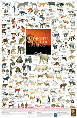 Bedrohte Säugetiere Afrikas von Welter-Schultes,  F W