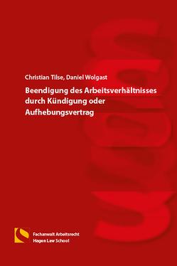 Beendigung des Arbeitsverhältnisses durch Kündigung oder Aufhebungsvertrag von Gräfin von Schlieffen,  Katharina, Wolgast,  Daniel, Zwiehoff,  Gabriele