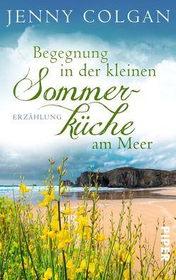 Begegnung in der kleinen Sommerküche am Meer von Colgan,  Jenny, Hagemann,  Sonja