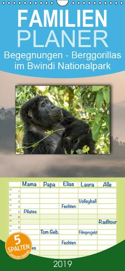 Begegnungen – Berggorillas im Bwindi Nationalpark – Familienplaner hoch (Wandkalender 2019 , 21 cm x 45 cm, hoch) von Jorda Motzkau,  Marisa