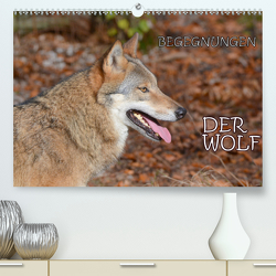Begegnungen DER WOLF (Premium, hochwertiger DIN A2 Wandkalender 2021, Kunstdruck in Hochglanz) von GUGIGEI
