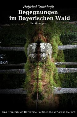 Begegnungen im Bayerischen Wald von Stockhofe,  Helfried