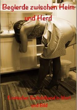 Begierde zwischen Heim und Herd von Schmitt,  Sarah