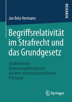 Begriffsrelativität im Strafrecht und das Grundgesetz von Hermann,  Jan Bela