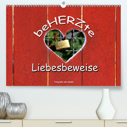 BeHERZte Liebesbeweise 2020 (Premium, hochwertiger DIN A2 Wandkalender 2020, Kunstdruck in Hochglanz) von Haafke,  Udo