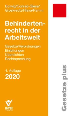 Behindertenrecht in der Arbeitswelt von Bolwig,  Nils, Conrad-Giese,  Maren, Groskreutz,  Henning, Hlava,  Daniel, Ramm,  Diana