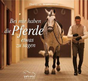 Bei mir haben die Pferde etwas zu sagen von Klasen,  Andrea, Orterer,  Christine, Sonntag,  Isabella, Wispelaere,  David de
