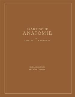 Bein und Statik von von Lanz,  T., Wachsmuth,  W.