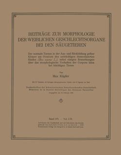 Beiträge zur Morphologie der Weiblichen Geschlechtsorgane bei den Säugetieren von Küpfer,  Max