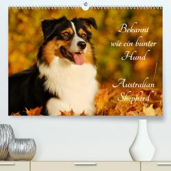 Bekannt wie ein bunter Hund. Australian Shepherd (Premium, hochwertiger DIN A2 Wandkalender 2021, Kunstdruck in Hochglanz) von Starick,  Sigrid