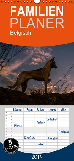 Belgische Schäferhunde – Der Malinois im Licht – Familienplaner hoch (Wandkalender 2019 , 21 cm x 45 cm, hoch) von Brandt,  Tanja