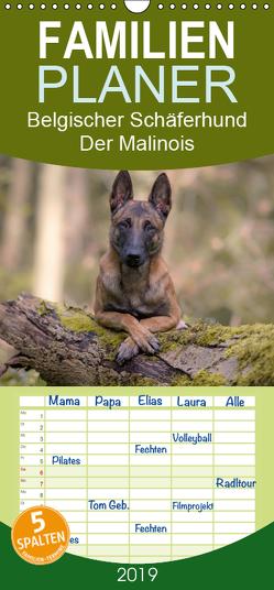 Belgischer Schäferhund – Der Malinois – Familienplaner hoch (Wandkalender 2019 , 21 cm x 45 cm, hoch) von Brandt,  Tanja