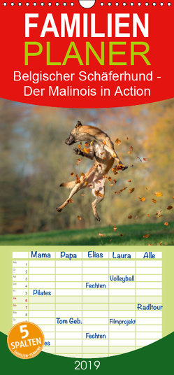Belgischer Schäferhund – Der Malinois in Action – Familienplaner hoch (Wandkalender 2019 , 21 cm x 45 cm, hoch) von Brandt,  Tanja