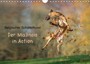 Belgischer Schäferhund – Der Malinois in Action (Wandkalender 2018 DIN A4 quer) von Brandt,  Tanja