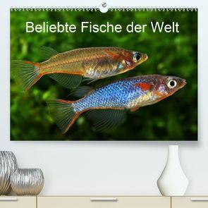 Beliebte Fische der Welt (Premium, hochwertiger DIN A2 Wandkalender 2020, Kunstdruck in Hochglanz) von Pohlmann,  Rudolf