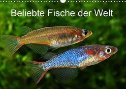 Beliebte Fische der Welt (Wandkalender 2019 DIN A3 quer) von Pohlmann,  Rudolf