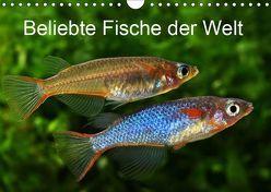 Beliebte Fische der Welt (Wandkalender 2019 DIN A4 quer) von Pohlmann,  Rudolf