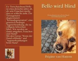 Bello wird blind von van Hattem,  Brigitte