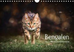 Bengalen Outdoor und Action (Wandkalender 2019 DIN A4 quer) von Krappweis,  Andreas