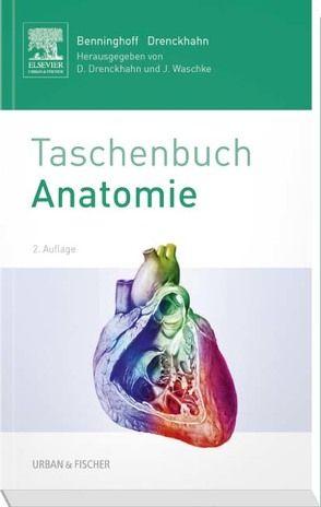 Benninghoff Taschenbuch Anatomie von Drenckhahn,  Detlev, Waschke,  Jens
