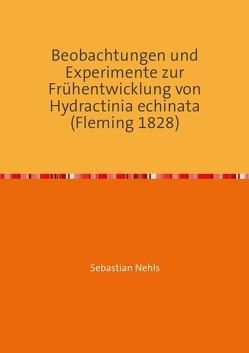 Beobachtungen und Experimente zur Frühentwicklung von Hydractinia echinata (Fleming 1828) von Nehls,  Sebastian
