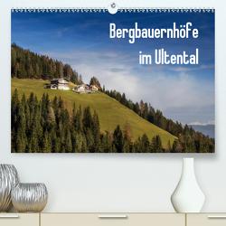 Bergbauernhöfe im Ultental (Premium, hochwertiger DIN A2 Wandkalender 2021, Kunstdruck in Hochglanz) von Pöder,  Gert