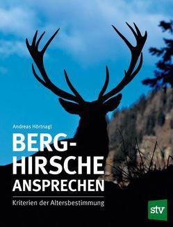Berghirsche ansprechen von Hörtnagl,  Andreas