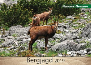 Bergjagd 2019