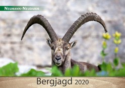 Bergjagd 2020