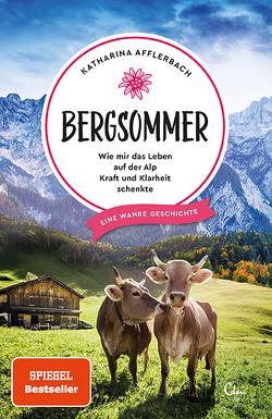 Bergsommer von Afflerbach,  Katharina
