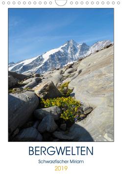 BergweltenAT-Version (Wandkalender 2019 DIN A4 hoch) von Miriam Schwarzfischer,  Fotografin