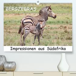 BERGZEBRAS Impressionen aus Südafrika (Premium, hochwertiger DIN A2 Wandkalender 2021, Kunstdruck in Hochglanz) von Thula